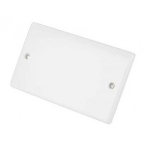 Selectric Smooth Blanking Plate - 2 Gang