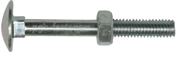 Cup Square Hex Bolt/Nut/Washer M10 x 180mm (Pk of 2)