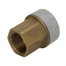 "Polyplumb 15mm x 3/4"" Female Iron Straight Connector"